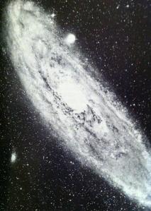 stars 11-1 (2)