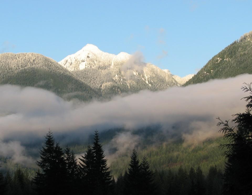2006_239